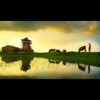 Quân Nguyễn Văn